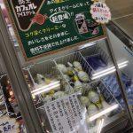 酪王カフェオレアイスクリームは売り切れ https://t.co/EVkiahqyIu