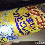 #紅ショウガ天ぷら #そば